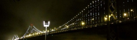 Bold, Seductive and Fierce...in Animal Print - Breathtaking View of the Bay Bridge