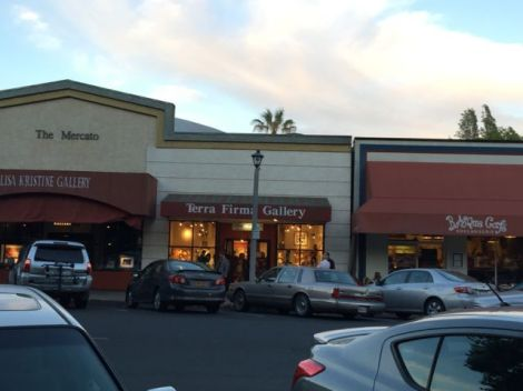 Image of downtown Sonoma
