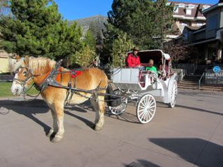 Image of horse and carriage