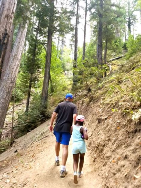 Image of man and child hiking up a hill in the redwoods.