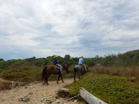 Image of 3 people riding on horses by the beach